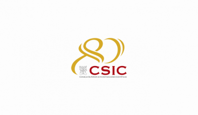 instituto de micro y nanotecnología del CSIC, díaz cubero, diaz cubero